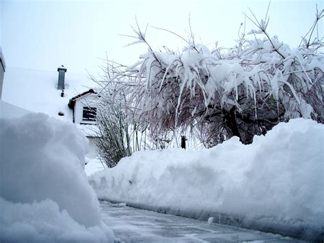 wann wird wasser zu eis warum ist schnee wei 223 und nicht durchsichtig