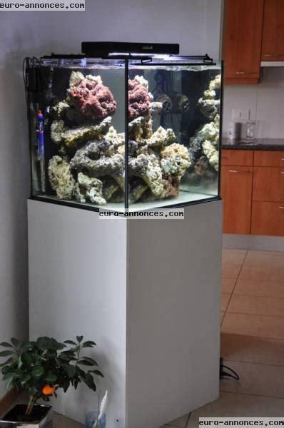 aquarium design a vendre aquarium juwel lido 120 eau de mer