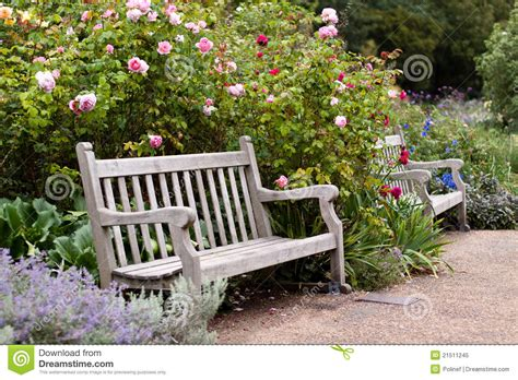 bench in the garden rose garden in the park with wooden bench stock image