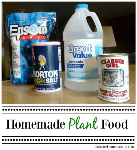 homemade flower food 25 best ideas about homemade plant food on pinterest