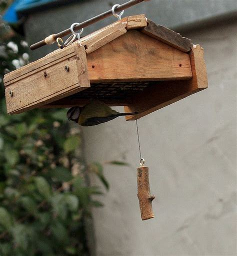 starling proof bird feeders for the birds pinterest