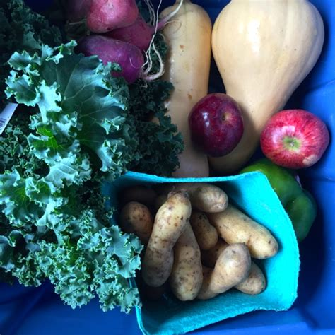 Front Door Organics Front Door Organics Front Door Organics Whole Food Live Green Toronto Card Front Door