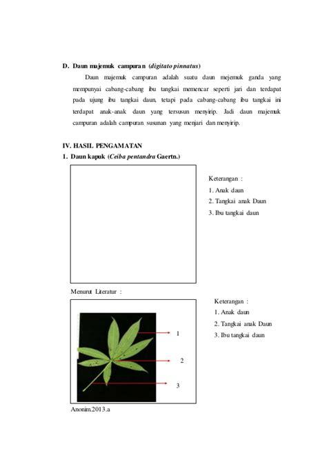 contoh laporan voip diagram daun majemuk choice image how to guide and refrence