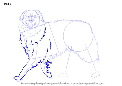 tutorial walking step by step how to draw a dog walking