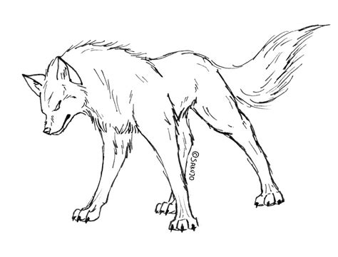 Wolf Outline Drawing Az Coloring Pages Realistic Wolf Coloring Pages