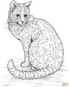 25 cat colors ideas mandala coloring pages cute kittens images