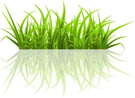 adobe illustrator grass pattern green grass free vector in adobe illustrator ai ai