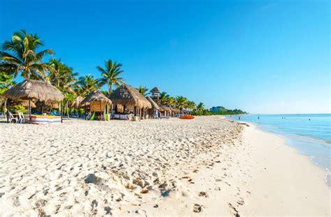 catamaran toucan cancun journalist shot dead in mexican resort town of playa del