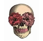 Estampa Caveira Flores Regata Longa