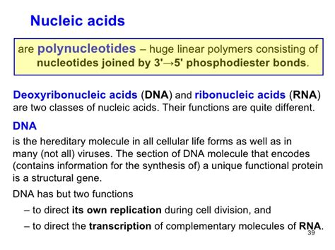 Nucleic Acids And Protein Synthesis Section 7 3 by 10 Polysacch Heteroglycosides Nucleic Acids