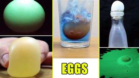 amazing science experiments that you can do with eggs cool