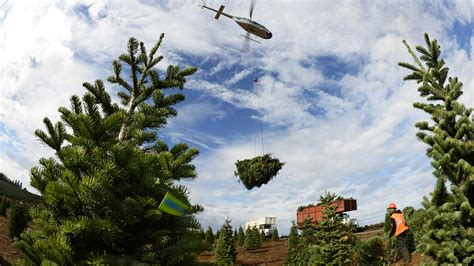 helicopter harvest spreads cheer aopa