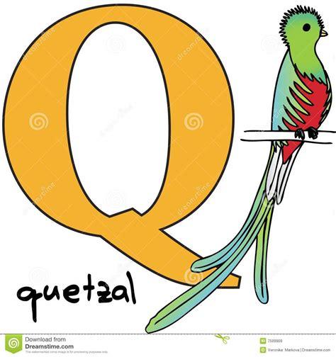 animal alphabet letters q u vector vectores en stock animal alphabet q quetzal stock vector illustration of