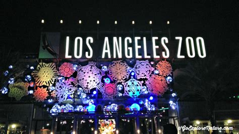 festival of lights los angeles los angeles holiday tradition la zoo lights