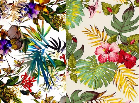 Tropical Wallpaper Pattern Tumblr | tropical wallpaper pattern