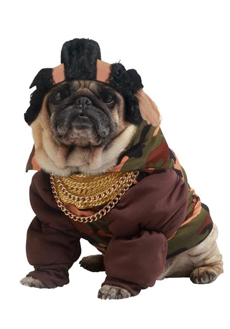puppy costume for pity the fool costume