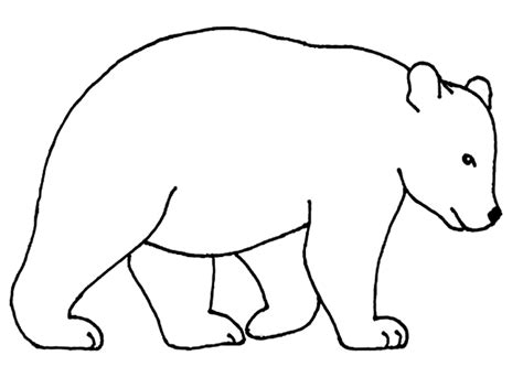 bear coloring pages for preschoolers bear coloring pages coloring kids