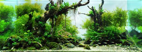 Takashi Amano Aquascaping by Takashi Amano Photographer And Aquarist
