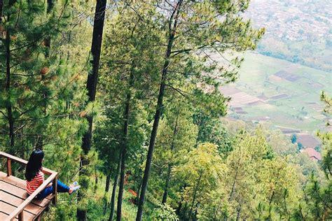 Ikea Flisat Bangku Kecil Anak Kayu Pinus Solid 17 tempat wisata yang benar benar unik di malang dan sekitarnya