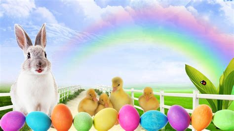 google wallpaper easter easter bunny wallpapers free wallpaper cave