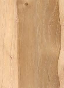 pecan the wood database lumber identification hardwood