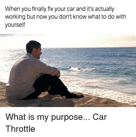 complex carbohydrates 9gag 25 best memes about what is my purpose what is my