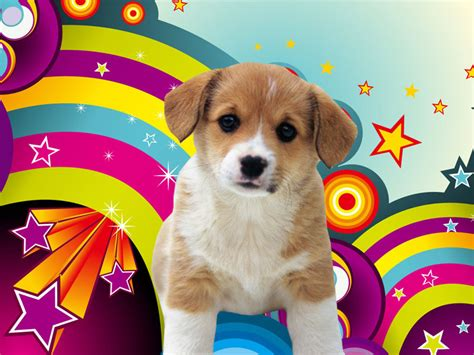 Wallpaper Background Puppies | wallpapers download puppies wallpapers download