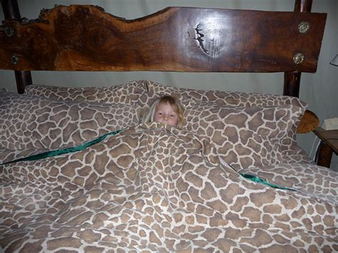 giraffe bedroom toddler beds kids beds home bedroom decor