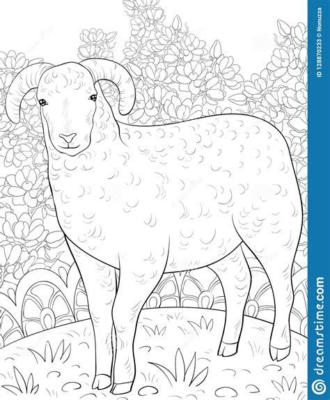 adult coloring bookpage  sheep image  relaxingzen