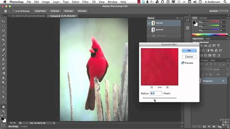 pattern brush tool photoshop adobe photoshop cs6 tutorial using the history brush and