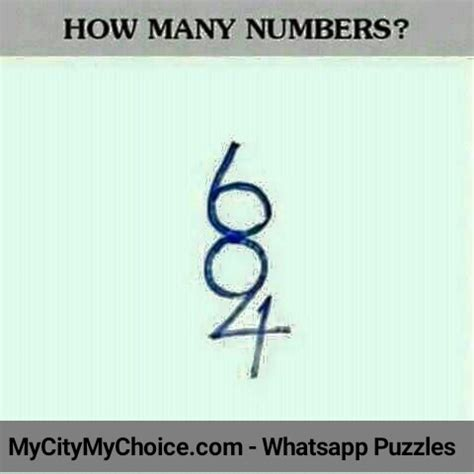 how many are there how many numbers do you see puzzle answer