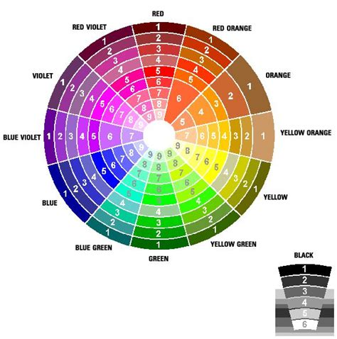 brown opposite color 10 best color theory images on color theory braces color wheel and color wheels