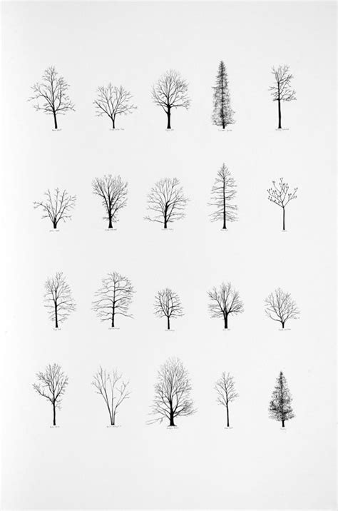 simple tree tattoo designs 25 best ideas about simple tree on