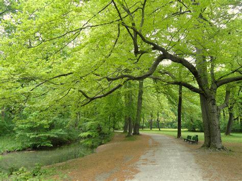 Englischer Garten Munich Wiki by File Landscape Englischer Garten Munich Dsc07137 Jpg