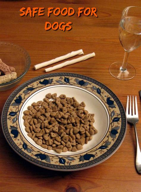 safe treats for puppies approved food dogvills