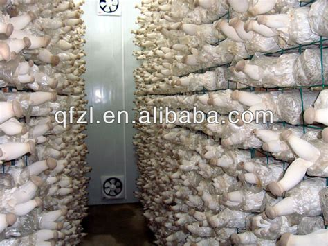 mushroom growing house design new design mushroom growing room climate control machine buy mushroom growing room