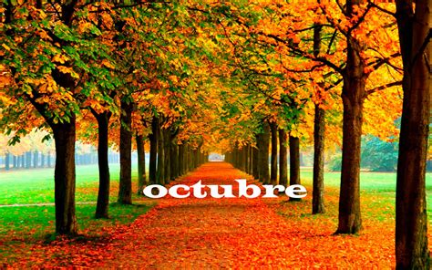 imagenes luzdary octubre 2013 octubre tareas del mes jardiner 237 a kuka blog