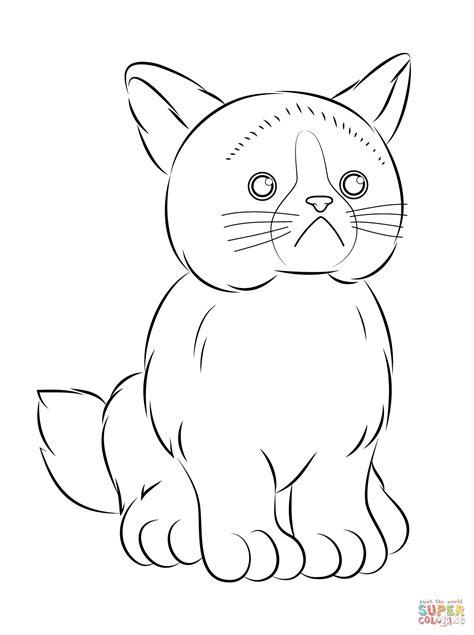 webkinz grumpy cat coloring page  printable coloring