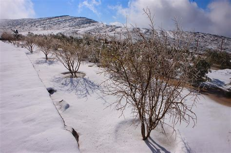 snow images uae weather 1 deg c in mountains snow next emirates 24 7