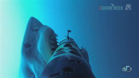 ataque de tiburon submarino en sudafrica ataque de tiburon submarino en sudafrica