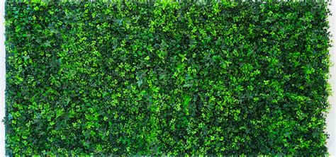artificial vertical garden green wall by evergreen trees