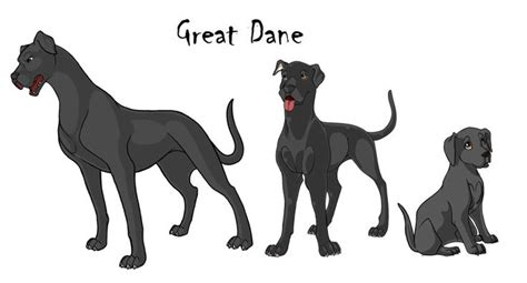 great dane puppy growth chart great dane color chart great dane growth chart wolf anya great danes
