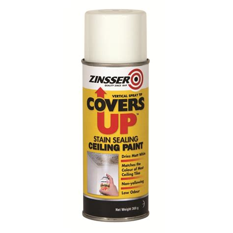 ceiling stain remover zinsser covers up 369g stain sealing ceiling paint aerosol
