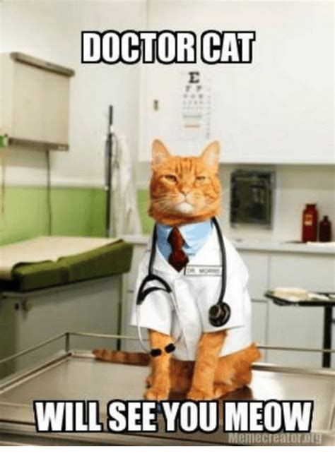Doctor Who Cat Meme - 25 best memes about doctor cat doctor cat memes