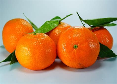 mandarino calorie e propriet 224 nutrizionali