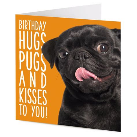 black pug birthday card birthday hugs pugs and kisses to you smiley black pug birthday card ebay