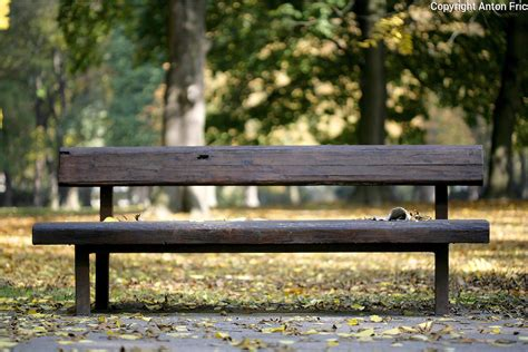 bench in the park sad janka krala documentary