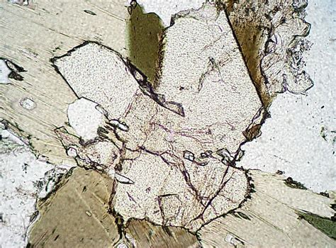 Epidote Thin Section by Igneous Minerals
