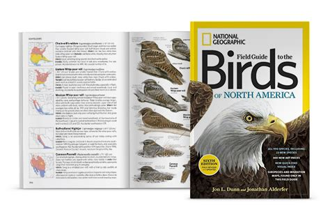 Pdf National Geographic Field Guide America by National Geographic Birds Of America Birds Of Prey