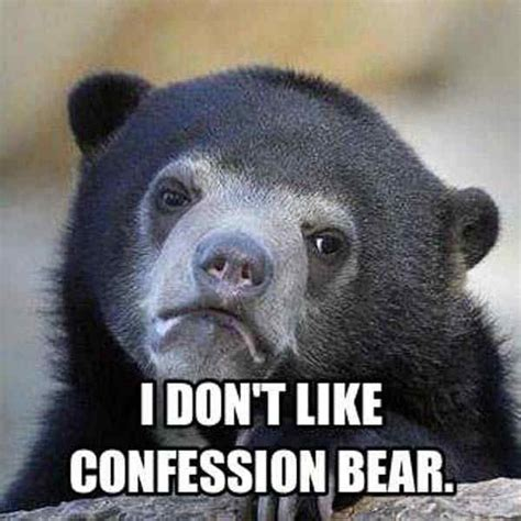 Bear Meme Generator - sad bear meme 39 of the most ridiculous confession bear